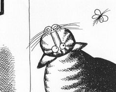 B Kliban Cat Original Vintage Art Fly Moth Book Plate 1983 Comical Wall Hanging Decorative Picture Buy 2 Get 1 Free