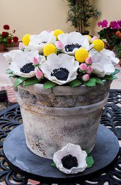 Flower Pot Cake by McGreevy Cakes Fondant Cakes, Cupcake Cakes, Cupcakes, Flower Pot Cake, Flower Cakes, Garden Cakes, Spring Cake, Gateaux Cake, Bouquet