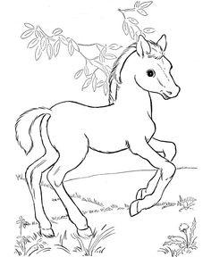 Ausmalbild Pferde Kids-n-Fun                                                                                                                                                                                 Mehr