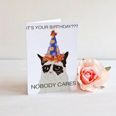 Grumpy Cat Birthday Card - it's your birthday? - nobody cares - funny - humor - cat lover - birthday card - sarcastic