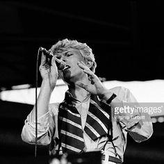 101% Bowie : Photo