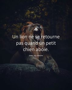 io - The only tool you need to launch your online business Citation Entrepreneur, Entrepreneur Motivation, Wallpaper Men, Crush Pics, Keep Strong, French Quotes, Dog Barking, No Me Importa, Photo Backgrounds