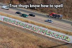 true thugs