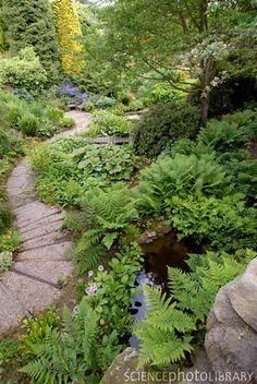 Shade Garden Ideas Midwest and Backyard Garden Design Modern. Woodland Garden, Cottage Garden, Garden Paths, Shade Garden, Backyard Garden Landscape, Urban Garden, Outdoor Gardens, Garden Pathway, Garden Planning