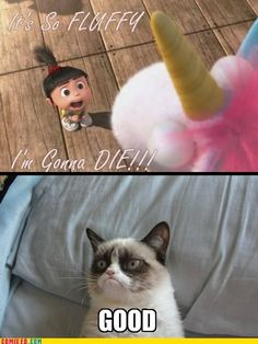 grumpy cat plus despicable me!! Yes!