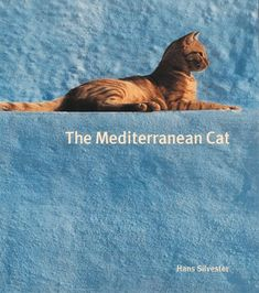 How do I not have this book in my home library of cat books? Hmm...