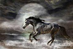Wild As The Sea by Carol Cavalaris