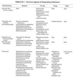 Acute Care: Acute Bronchitis Nursing Care Plan