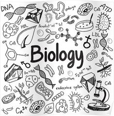 Doodles - Biology science theory doodle handwriting and tool model icon in white isolated paper background used for school education and document decoration, create by vector Science Doodles, Science Art, Doodle Drawings, Doodle Art, Hand Drawn Font, Pages Doodle, Adult Coloring Pages, Coloring Books, Science Notebook Cover
