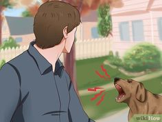 How To Deal With Aggressive Dog Behavior Problems - Dog Health Care and Information Boxer Dog Quotes, Boxer Dogs, Doggies, Dog Training Near Me, Best Dog Training, Potty Training, Obedience School For Dogs, Dog Control, Dog Training