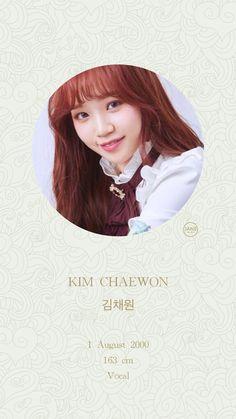 (Credits to the real owner/s) Kpop Girl Groups, Kpop Girls, Yuri, Sakura Miyawaki, Pre Debut, Japanese Girl Group, Kim Min, The Wiz, Sweet Girls
