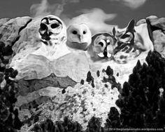 Mount Owlmore Pinned by www.myowlbarn.com