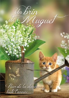 Personnalisation de ma carte - Cartes Premier mai - Un brin de muguet