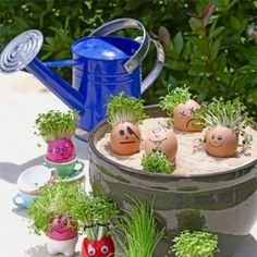 Sprouts in empty egg shells is a fun easter idea!