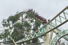 Thrill-seekers forced to walk down tracks of 98ft Thorpe Park Colossus after rollercoaster stopped in mid-air. They were left terrified when a rollercoaster gro