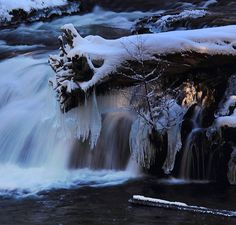 Now this is different...icicles at Crater Lake National Park | Gabriel Gutierrez. Must be from one of the waterfalls.
