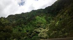 Natural beauty of Hawaii