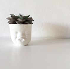 #Mood #cup with a plant #Livink