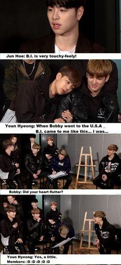 "so cute _in ""Pops in Seoul"" (Favorite Meme Guys) Bobby, Ikon Member, Ikon Kpop, Kdrama Memes, Kim Hanbin, Bts And Exo, Yg Entertainment, K Idols, My Boyfriend"