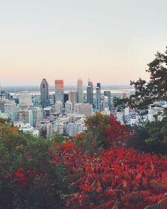 #montreal #autumn #autumninmontreal  #montrealskyline #vsco #vscocam #montrealcolors #autumntones #kondiaronk #montroyal #belvederedumontroyal #fall #fallinmontreal #fallcolours