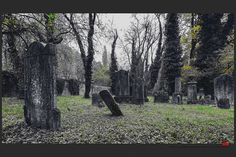 https://flic.kr/p/Bs3zLi | Autumn at the Jewish cemetery in Ferrara | © This photo is copyrighted by the photographer and may not be used without permission.