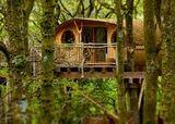 Wales tree house. Cosy!