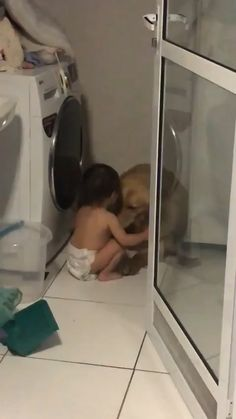 Golden retriever is scared of thunder, baby soothes - Best Picture For Funny babies For Your Taste You are looking fo - Funny Babies, Funny Dogs, Cute Babies, Funny Baby Faces, Cute Baby Videos, Cute Animal Videos, Cute Funny Animals, Cute Baby Animals, Cute Gif