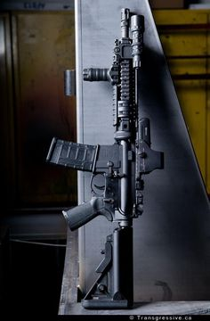 AR-15 is what I want for my birthday