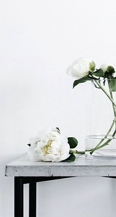 Via NordicDays.nl | Sara Medina Lind | Concrete | White Roses