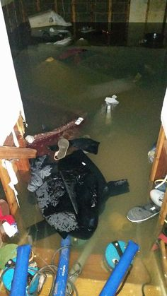 Water Damage Repair Arlington VA