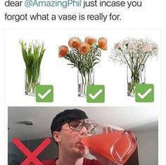 wot if it rlly was a vase. i mean it's a phil thing to do Moon Hunters, Dan And Phill, Phil 3, Danisnotonfire And Amazingphil, Phil Lester, Dan Howell, Markiplier, Phan, Youtubers