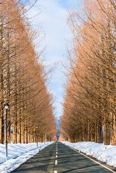 Winter road by Takk B on 500px
