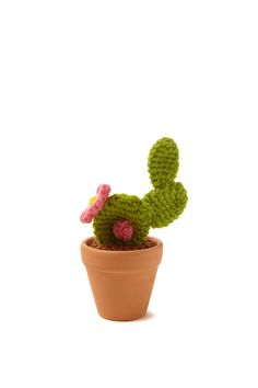 Bring the outdoors to your desk with these hand crafted crochet cacti! <br> Choose from 3 designs, and create your own indoor garden that requires no TLC! <br> Each cactus sits in a terracotta pot. <br> Measures approx 9cm. <br/>
