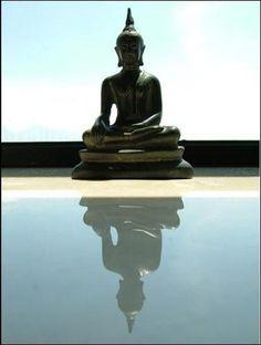 Reflective Buddha