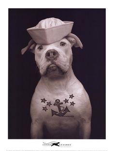 sailor )
