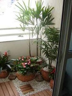 Put plants together, they thrive. Tiny Balcony, Balcony Design, Balcony Garden, Garden Design, Pocket Garden, Small Outdoor Spaces, Apartment Balcony Decorating, Garden Spaces, Backyard Landscaping