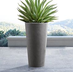 RH's Weathered Cast Stone Round Planter:The look of timeworn stone belies the more manageable weight of these versatile planters, perfect for porch, poolside or even indoors.