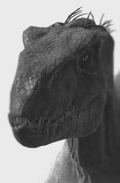 Jurassic World 3, Jurassic World Dinosaurs, Jurassic World Fallen Kingdom, Dinosaur Drawing, Dinosaur Art, Indominus Rex, Tyrannosaurus, Jurassic Park Poster, Falling Kingdoms