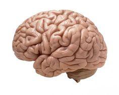 SFの世界がついに現実に!?失った記憶を回復させる脳埋め込み型装置がいよいよ発表間近(DARPA) : カラパイア