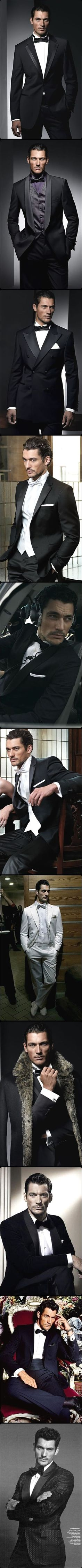MODEL DAVID GANDY Black tie attire