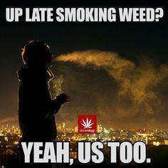 Marijuana Funny, High Times, Smoking Weed, Movies, Movie Posters, 2016 Movies, Film Poster, Films, Film