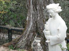 O Anjo de Portugal, também conhecido como o Anjo da Paz, é uma manifestação de São Miguel Arcanjo, que representa a essência espiritual de Portugal. O primeiro relato da sua aparição dá-se na Batalha de Ourique, tendo sido depois esquecido a partir do século XVII, voltando a haver registo da sua manifestação em 1917, aparecendo aos três pastorinhos de Fátima antes da aparição de Nossa Senhora. O seu culto foi restaurado em 1952, pelo Papa Pio XII, sendo comemorado no dia 10 de Junho.