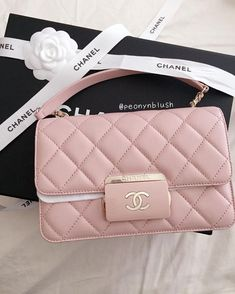 Pinterest @cravingshay Beautiful Handbags, Beautiful Bags, Cute Bags, Big Bags, Small Bags, Pink Chanel Bag, Chanel Blush, Chanel Tote Bag, Chanel Handbags