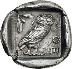 How did owls come to be associated with wisdom and knowledge? - Quora