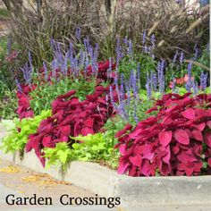 Beautiful and bright curbside garden.  This display really makes a statement.