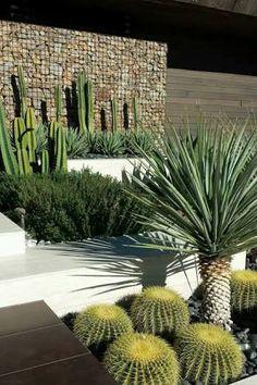 Resultado de imagen para jardines de cactus