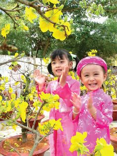 Vietnamese Tet holiday (new year day) - 2013, year of Snake
