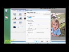 How to Crop or Resize Pictures with Picasa For Dummies