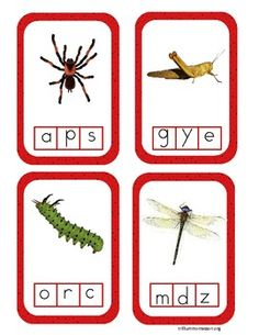Bugs! Literacy Centers