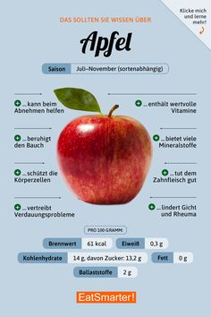 You should know about apples eatsmarter.de recipes and nutrition and drinks recipes recipes celebration diet recipes Diet And Nutrition, Healthy Life, Healthy Living, Apple Diet, Fat Burning Drinks, Food Facts, Calorie Diet, Fitness Diet, Apple Fitness